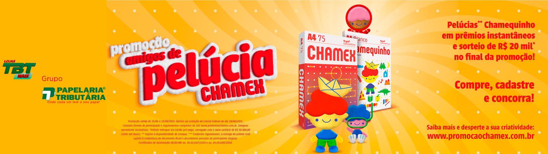 Banner 2 Chamex